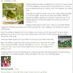 Love My Salad blog - stinging nettles